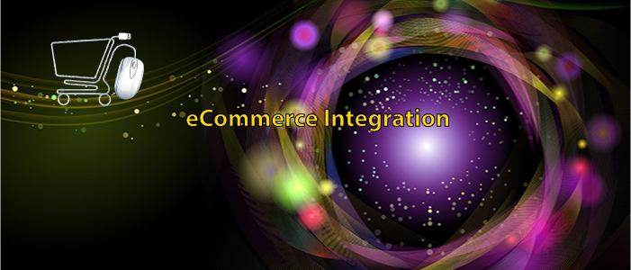 Services e-Commerce Integration
