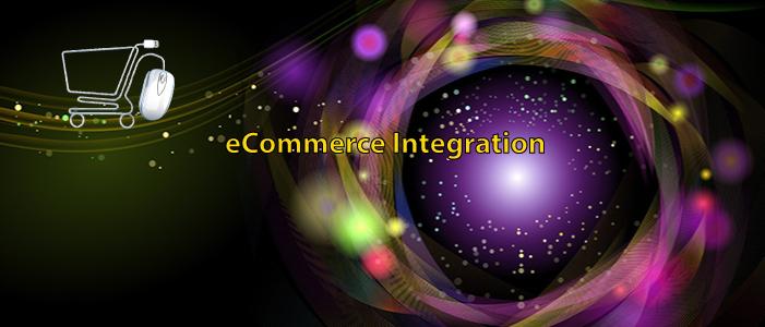 Services e-Commerce Integration