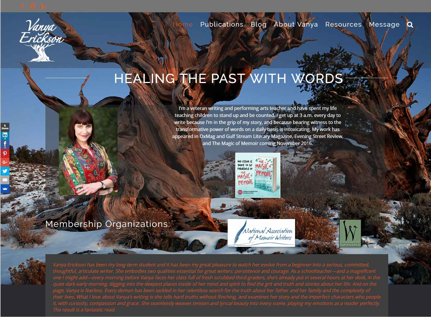Vanya Erickson – Author Blogger Website, Logo Design