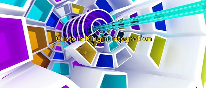 Custom Module and Plugin Integration